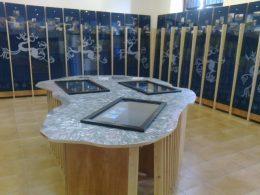 L'Aia dei musei prosciugamento (2)