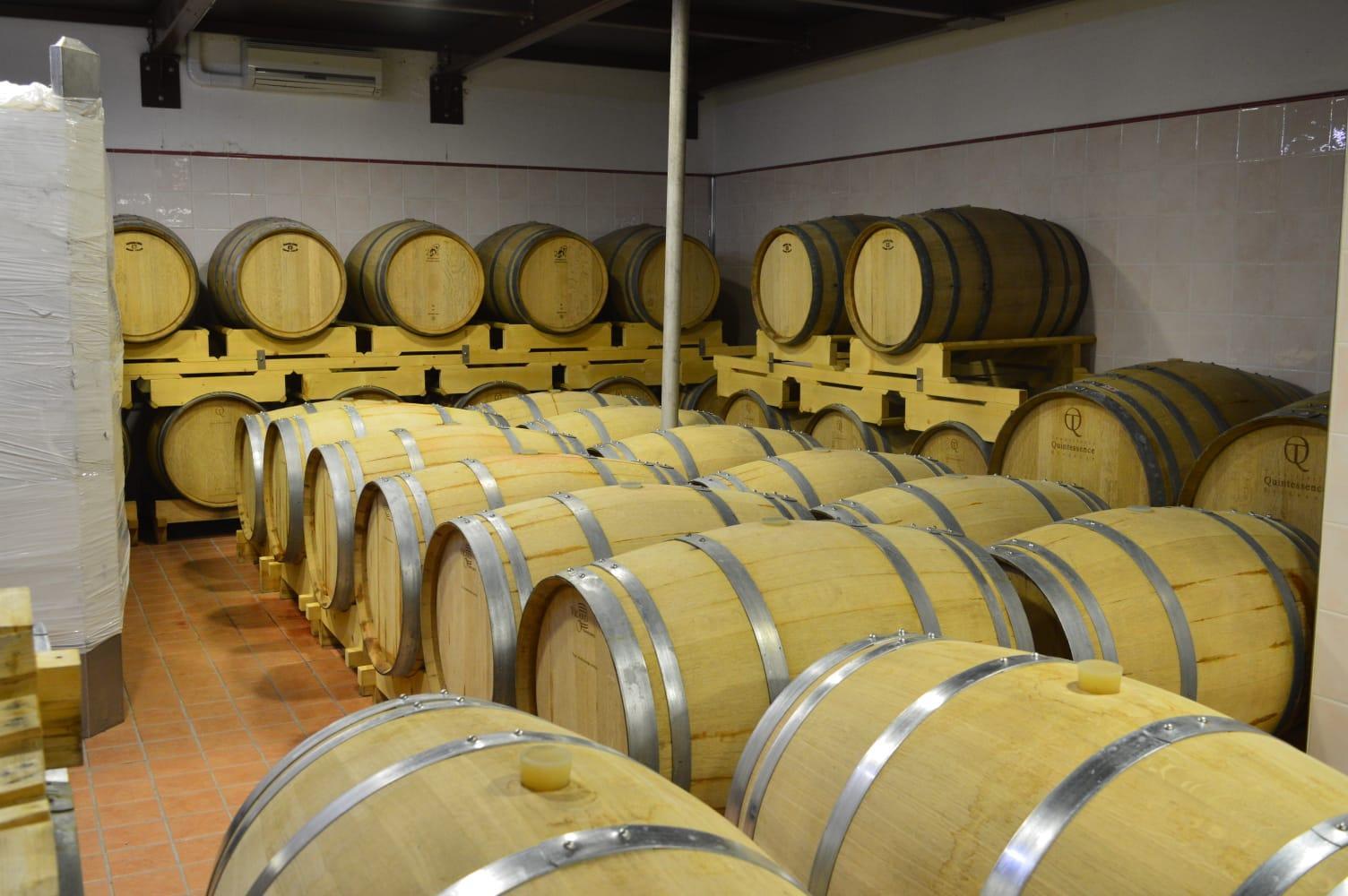 botti-legno-vino